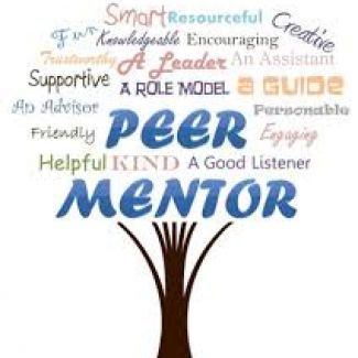 Holler logo of Teacher Mentoring
