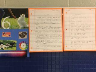 Writing Example #4