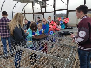 elementary visit to school farm- picture 1