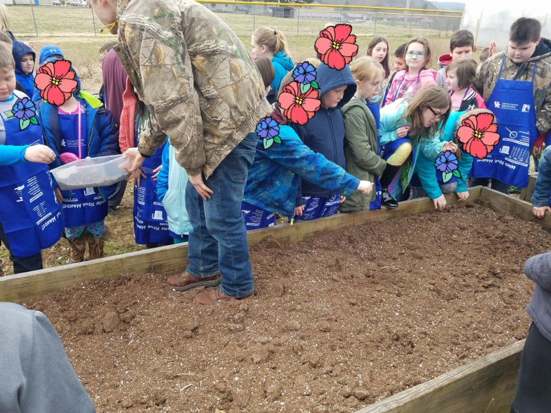 elementary-visit-to-school-farm-picture-2